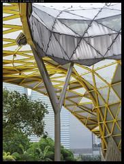 _2E11107b copy (mingthein) Tags: thein onn ming photohorologer mingtheincom availalblelight canopy architecture kl kuala lumpur malaysia garden abstract olympus em1 mark ii em1ii em12 microfourthirds m43 mft zd 121004 zuiko digital 12100f4