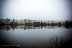 Some lost lake in the middle of Czech Republic (VeRoNiK@ GR) Tags: czech republic holidays trip lake water nature trees nowhere middle reflection photography photoshop flickr sky mist misty fog foggy