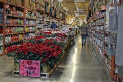 10 Inch Poinsettias  (HDR) (Good Morning Everyone :)) Tags: flickrfriday christmasmarket homedepot red poinsettias display isle 10inchpoinsettiasfor1499 people shoppers employee items shelves full lights cleaning supplies batteries store huge reflections