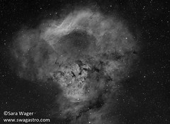 NGC7822 - A skull for Halloween (Sara Wager (www.swagastro.com)) Tags: sarawager swagastro astrophotography astro astronomy astrodon astronomia astrology constellation celestial deepspace deepskydso deepsky dso emissionnebula emission nebula nebulosity nebulae ngc7822 mono blackandwhite stars star sky skies space universe takahashi fsq85 mesu mesu200 telescope qsi qsi683