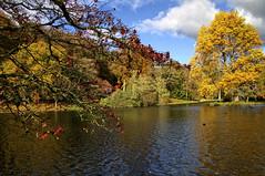 autumn at stourhead 4 (jjays7155) Tags: eos7d sigma1750mm stourhead