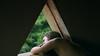 298/366: boredom (Andrea · Alonso) Tags: me selfportrait autorretrato 366 365 tree girl back light nature green
