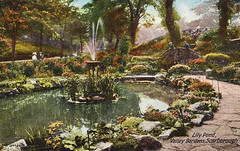 Valley Gardens (storiesfromscarborough) Tags: lilypond 1910s edwardian scarborough seaside valleygardens peoplespark park gardens history