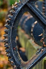 cogs and gears-1 (douglasjarvis995) Tags: old cogs gears disused history metal machine rust water wheel quarry bank close macro