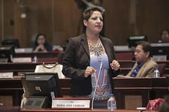 Mara Jos Carrin - Sesin No. 417 del Pleno de la Asamblea Nacional  / 01 de diciembre de 2016 (Asamblea Nacional del Ecuador) Tags: asambleanacional asambleaecuador sesinno417 pleno plenodelaasamblea plenon417 417 marajoscarrin