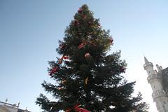 Grote markt bruxelles: Christmas time! (J jeid) Tags: bruxelles brussels citt city grotemarkt