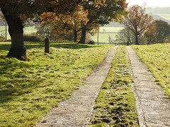Spiritual path (Lancashire Lass ...... :) :) :)) Tags: lane track trees mist morning grass frost november countryside landscape autumn lancashire ribblevalley quote elston