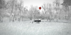 The red balloon stories I (Asi Amorosi ~ Thanks all for your love and supp) Tags: winter winterscape wintertime snow snowscape redballoon bw blackandwhite sl secondlife virtuallandscape digitalart photoshopart secondlifeart photomanipulation dreamy snowy virtualworld