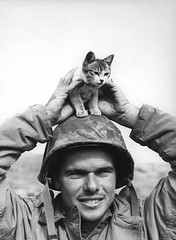 #U.S. Marine Corporal Edward Burckhardt of the 5th Marine Division, poses for a photo with a kitten on top of his helmet during a lull in the fighting on Iwo Jima, February 1945. [1064  1451] #history #retro #vintage #dh #HistoryPorn http://ift.tt/2g8NBu (Histolines) Tags: histolines history timeline retro vinatage us marine corporal edward burckhardt 5th division poses for photo with kitten top his helmet during lull fighting iwo jima february 1945 1064  1451 vintage dh historyporn httpifttt2g8nbud