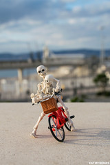 Eat my Bones (Pose Skeleton) Bicycle ride in Marseille (EatMyBones) Tags: bike france major marseille miniature outside poseskeleton rement skeleton toy walk