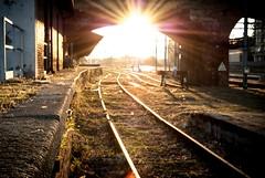 Train Station (marcobirello) Tags: train treni italia luce sole alba luci colori