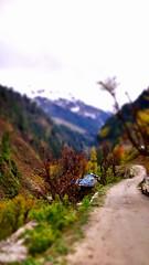 A lonely hut on mountain (amir_mku) Tags: mountain nature landscape hut tiltshifteffect