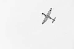 flying star (rikioscamera) Tags: blackandwhite bw airplane nikon aircraft highkey lightroom torranceairport d7000 silverefexpro