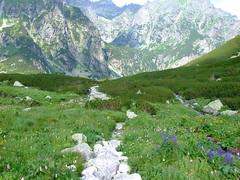 FUJI20140802T094724 (Robert.BlueSky) Tags: hike trail dolina tatry vysoke sedlo prielom bielovodska