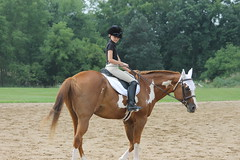 Dressage at Woodbine Schooling Show (August 24, 2014 - Chelsea, Michigan) (cseeman) Tags: horses chelsea michigan annarbor horseshow tests riders dressage horsefarm dressageshow woodbinefarms woodbinedressage dressage08242014