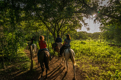 Riding (Documentary & Travel Photography) Tags: flowers sky moon mountain tree green nature water beauty animals night river stars waterfall sand energy rocks stream loneliness peace open force hiking space wildlife rapids kind granite raft strength equestrian docile