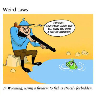 Weird Laws Wyoming