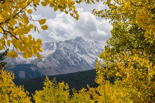 Rocky Mountain Gold