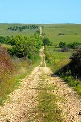 Long Road (thefisch1) Tags: road travel nikon power alma horizon nowhere pasture kansas jeffrey prairie rough gravel divide eskridge