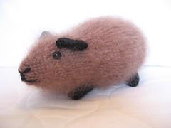 Wheek&Squeak knitted guineapigs #22 (Dr Badcrumble - Maker & Baker) Tags: guinea pig guineapig cavy handmade knitted crafted mrsbadcrumble wheeksqueak