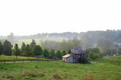 Morning on the Farm (David Hoffman '41) Tags: road morning light sun mist nature field fog barn rural landscape hope virginia early day cattle farm country hill rustic shed scene pasture lane agriculture pastoral optimism tinroof bucolic outbuilding charlottecounty