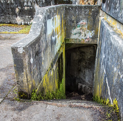 the silence of the lambs (~ yucatan ~) Tags: graffiti washington moss decay steps bunker staircase fortworden porttownsend lichen buffalobill artilleryhill