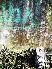SUNP0107 (alainalele) Tags: france french cit north internet creative commons east council housing bienvenue et lorraine 54 nouvelle ville hlm licence banlieue moselle presse bloggeur meurthe paternit alainalele lamauvida