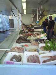 mot-2006-remoulins-pic_0044_st-remy-market-fish-stall_450x600