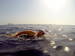 Breathe in...... (charlottehbest) Tags: ocean sea water swimming swim island open may adventure swimmer oman challenge 2014 openwater seawater openwaterswimming seaswimming frontcrawl 4km fahalisland seaswim charlottehbest fahalislandswim