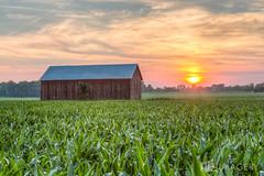 Farm Sunset (AP Imagery) Tags: sunset usa barn rural corn farm kentucky ky