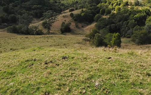 1390 Mooral Creek Road, Wingham NSW 2429