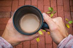 Autumn Prep 280/366 (Watermarq Design) Tags: cocoa mug hands autumn autumncolors fall project366 rainyday