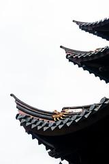 Levels (GavinZ) Tags: asia china ningbo 寧波 temple buddist architecture roof 舍利 relic budda building pagoda 中国