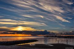 2016-10 Zonsondergang aan het Haringvliet (Hellevoetsluis/NL) (Meteo Hellevoetsluis) Tags: 1010 2016 aboutpixels algemeen beeldendekunst haringvliet hellevoetsluis herfstseizoen mnd10 nl nederland netherlands southholland visualarts voorneputten zeedijk zuidholland art cirrostratus cloud clouds collecties cumulus fotografie kunst meteo nature natuur neerslag oktober photography precipitation skyline specials strand sun sunset weather weer wolk wolken zon zonsondergang