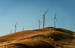 Gold and Turbines (Geoff Livingston) Tags: windmill turbine gold hills energy green clean california