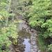 0735 Buttermilk Falls State Park