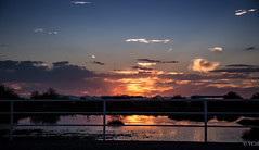 (valeriecozart) Tags: blue arizona dusk gold green outdoors pink sunset water whitefence