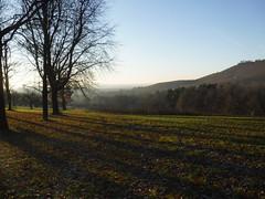 Scheuerberg (david_m.hn) Tags: landschaft landscape outdoor erlenbach heilbronn germany hgel hills weinberg vineyard scheuerberg