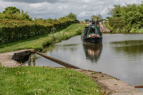 Willow leaves Bosley Lock 2