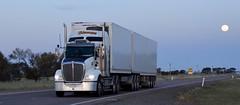 Blenners (quarterdeck888) Tags: trucks transport semi class8 overtheroad lorry heavyhaulage cartage haulage bigrig jerilderietrucks jerilderietruckphotos nikon d7100 frosty flickr quarterdeck quarterdeckphotos roadtransport highwaytrucks australiantransport australiantrucks aussietrucks heavyvehicle express expressfreight logistics freightmanagement outbacktrucks truckies t409 blenners fullmoon supermoon bdouble