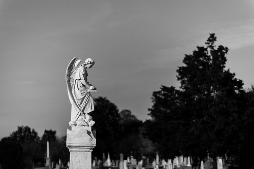 Thumbnail from Congressional Cemetery