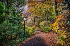 Park Path (JMS2) Tags: autumn nature park path lampposts walk centralpark fall manhattan urban public nycparks