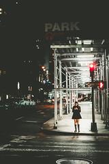 Park Icon (Pixelicus) Tags: newyork newyorkcity newyorker nyc ny usa street streetphotography