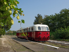 Hoppig type ... (Harry -[ The Travel ]- Marmot) Tags: travel reis reizen traveling reisen sne nvbs hongarije ungarn magyar hungary mav arpad aamot 23 ganz 1935 allrightsreservedcontactmebyflickrmail red white railbus motorwagen motorcar train trein railway zug bahn spoor spoorwegen transport rail hop