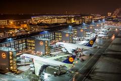 Frankfurt Airport Terminal 1 - January 2016 (Bjoern Schmitt) Tags: dabyl lufthansa boeing 747830 cn 37836 1492 daimg airbus a380841 069 frankfurt fra deicing gate zgates terminal 1 ground skyline eddf night slush damp lights