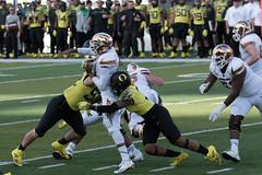 Ducks vs Arizona State (boudreaudavid83) Tags: duck football oregon arizona state nikon d500