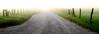 (rickhanger) Tags: fog foggy dawn sunrise lane road gravelroad fence fenceline landscape