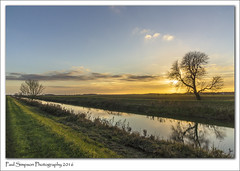 River Ancholme, Lincolnshire (Paul Simpson Photography) Tags: riverancholme ancholmevalley water river paulsimpsonphotography sonya77 sunset december2016 photosof photoof imagesof imageof tree winter bluesky naturalworld farmland lincs northlincolnshire lincolnshire southhumberside