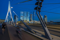 """ERASMUS"" in the blue (Blende1.8) Tags: erasmusbrcke erasmus bridge rotterdam netherlands bluehour blauestunde brcke construction night people street traffic movement bewegung carstenheyer niederlande tram light licht abend evening architecture architektur colors colours ilce7m2 a7m2 a7ii erasmusbrug"