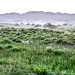 iSimangaliso Wetland Park, KwaZulu-Natal, South Africa